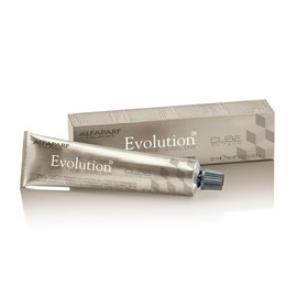 Coloração Alfaparf Evolution of the Color 11.00 Louro Platina - 60ml